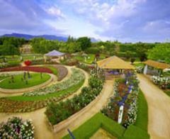 Hunter Valley Wine & Garden Tour - Details...